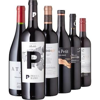 """Rotwein-Set """"Spaniens best of"""", 6 Flaschen"""