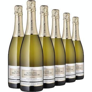 Qualitätsschaumwein Crémant Pfalz Brut Senator Schloss Wachenheim, 6 Flaschen