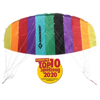 Dual Line Sport Kite 1.3