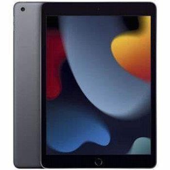 iPad 2021 MK4E3FD/A 256 GB Wi-Fi+Cell, spacegrau